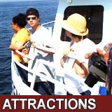 MA Attractions